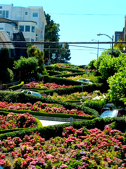 SF TWT Lombard st day shot