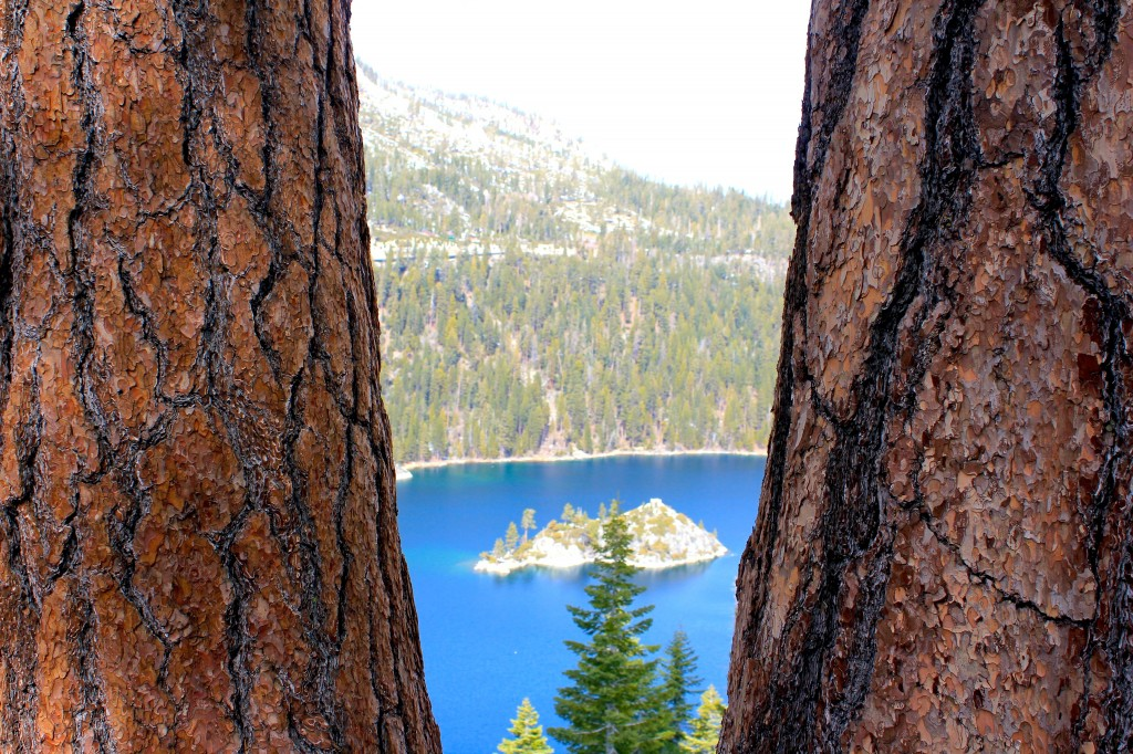 Tahoe TWT IMG_4929